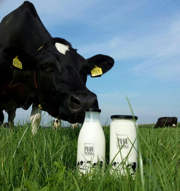 Opdracht: ontwerp voor op melkfles Puur Vechtdal