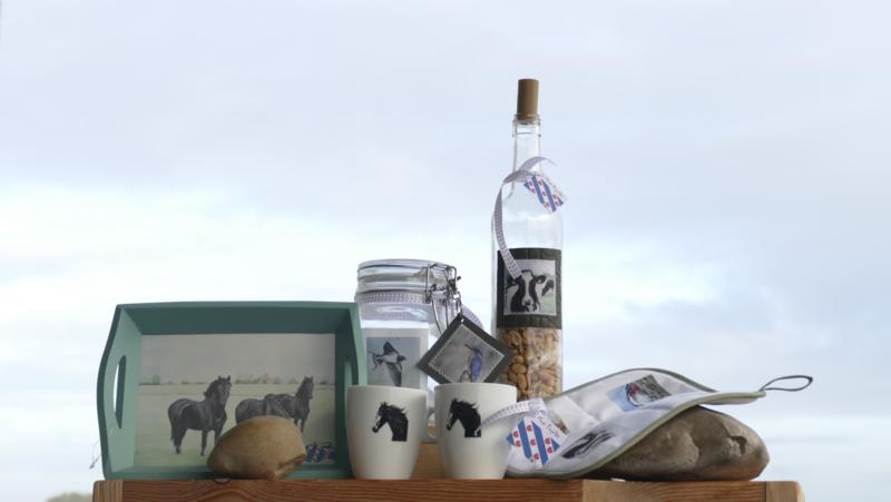 Paarden cadeau geschenken pakket Moai Fryslân