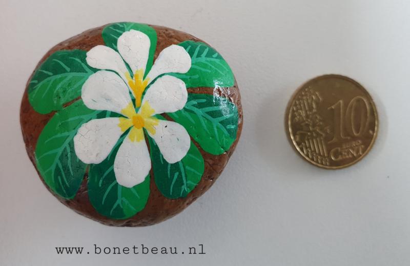 Stenen magneet bloemen Wit