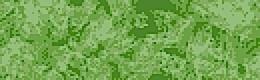 4041 Grass (2st)