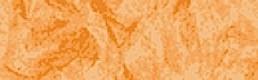4003 Apricot (2st)