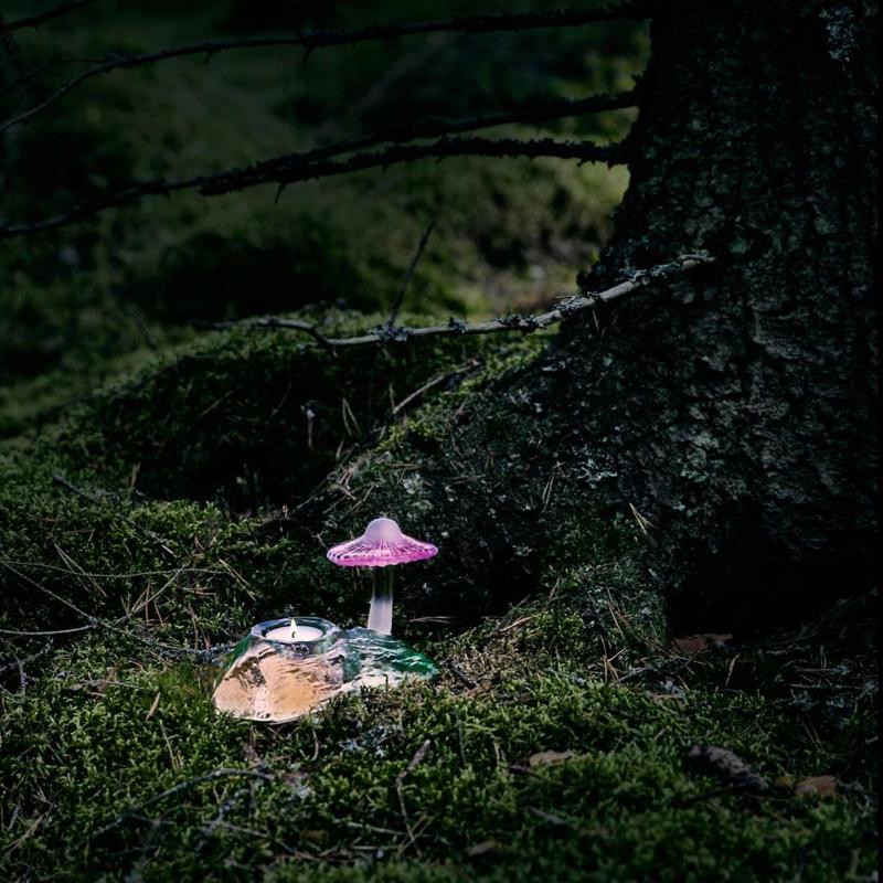 Mushroom - Mats Jonasson