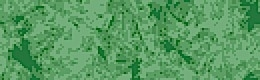 4042 Chlorophyll (2st)