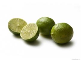 Tinctuur (BIO): Limoenvrucht Ø - Citrus aurantifolia  - 100 ml