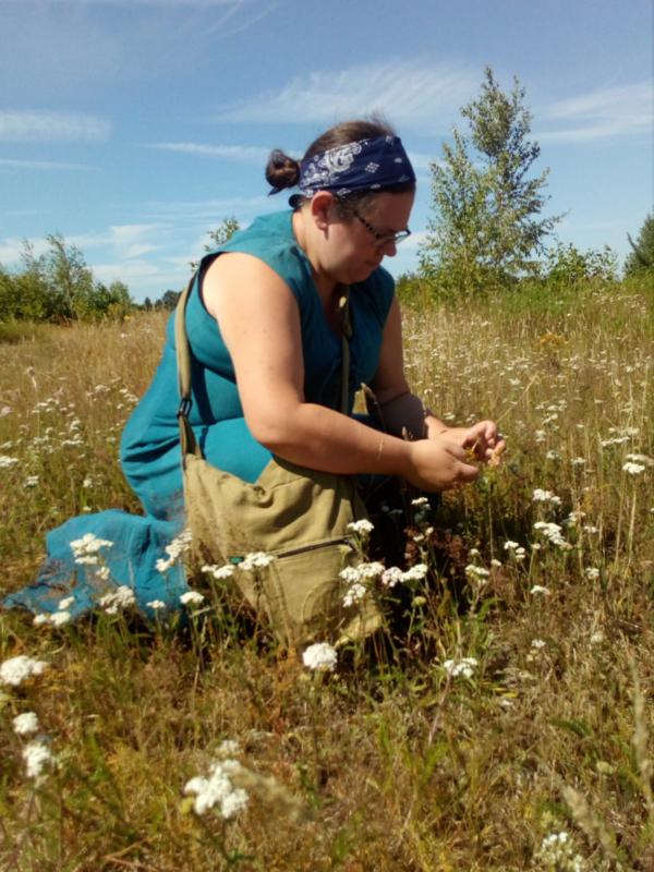 Workshop: Kruidensafari door het Groninger landschap - Bourtange