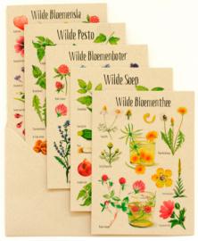 Postkaarten: 5 dubbele wenskaarten met envelop