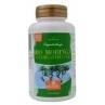 Hanoju Moringa BIO oleifera heelblad 350 mg 180 capsul