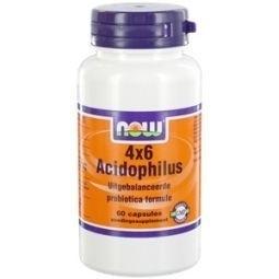NOW 4 x 6 Acidophilus