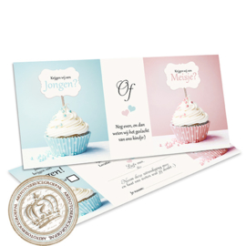 The little cupcakes - Baby Gender Reveal Invites (NL)