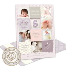 Geboortekaartje LG342 Girl