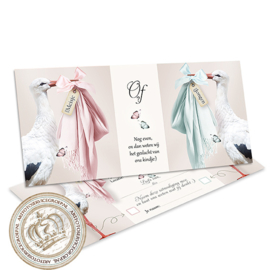 Stork & Storky - Gender Reveal Party Invites (NL)