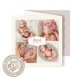 Geboortekaartje LG010 FC3 Pink