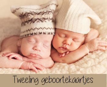 Tweeling & Drieling Geboortekaartjes