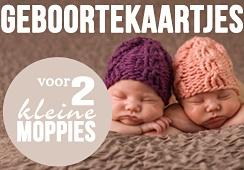 Foto geboortekaartjes voor tweelingen