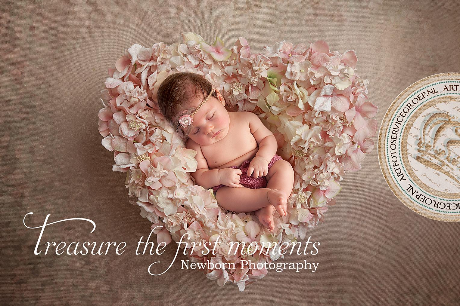 Een newborn shoot van jouw kleine wondertje