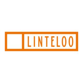 Keralux® Linteloo Premium Set für Leder Reinigung und Pflege