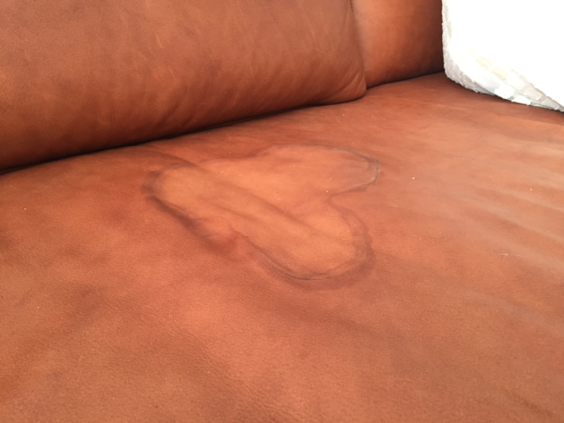 Stupendous Removing Urine Stains From Leather Leather Lck Nederland Onthecornerstone Fun Painted Chair Ideas Images Onthecornerstoneorg
