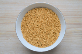Miyuki 11-4202F Duracoat Galvanized Matte Gold (pro 10 gram)