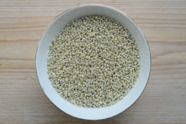 Miyuki 8-4201 Duracoat Galvanized Silver (per 10 gram)