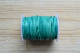 Rundleer 1 mm Vintage Turquoise per meter