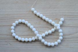 Witte schelp ronde kralen 8 mm