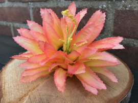 Kunstbloemen zalmroze/gele agave, diameter 15 cm