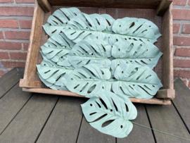 Kunstblad monstera (gatenblad plant) mat groen 40 cm