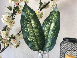 Kunstblad dieffenbachia 50 cm