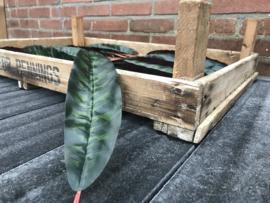 Kunstblad calathea plant 32x7 cm donkergroen