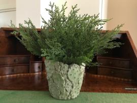 Conifeer/coniferen kunst takken 28 cm