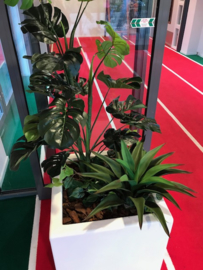 Kunstplanten fit academie de Bokkeduinen Amersfoort