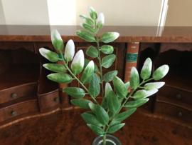 Kunstblad takken van de acacia boom 43 cm