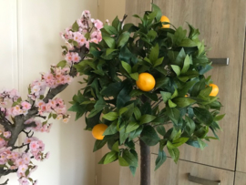 Kunstboom citrusboom, 95 cm
