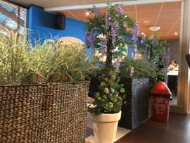 Kunstbomen/kunstplanten gouden regen restaurant de boskamer Putten
