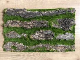 Achtergrond voor kunstplanten muur, bladerenwand boomschors/mos paneel
