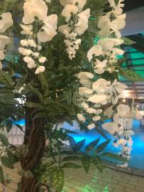 Kunstbomen/kunstplanten subtropisch zwembad, goudenregen wit 180 cm