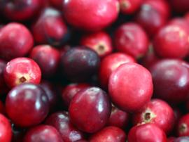 Balsamico Cranberry