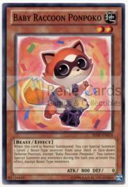 Baby Raccoon Ponpoko - Unlimited - SHSP-EN014