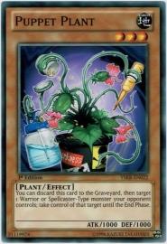 Puppet Plant - 1st Edition - YSKR-EN022