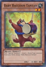 Baby Raccoon Tantan - 1st Edition - SHSP-EN015