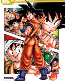 Dragon Ball Z - Collage (M23)