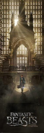 Fantastic Beasts and Where to Find Them - Teaser (11)