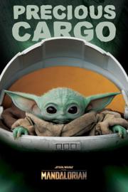 Star Wars - The Mandalorian - Precious Cargo (108)