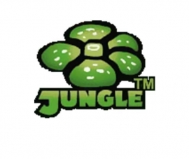 Jungle - 1st. Edition - English