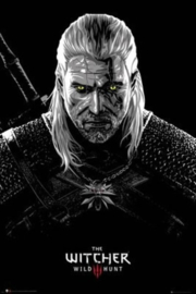 The Witcher - Toxicity Poisoning - (130)