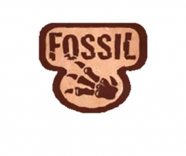 Fossil - 1st. Edition - English