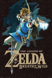 The Legend Of Zelda - Breath Of The Wild (028)