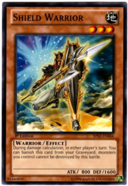 Shield Warrior - 1st Edition - BP02-EN066