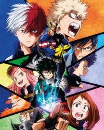 My Hero Academia - Group (M30)