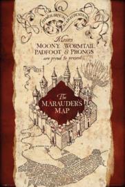 Harry Potter - The Marauder's Map (060)